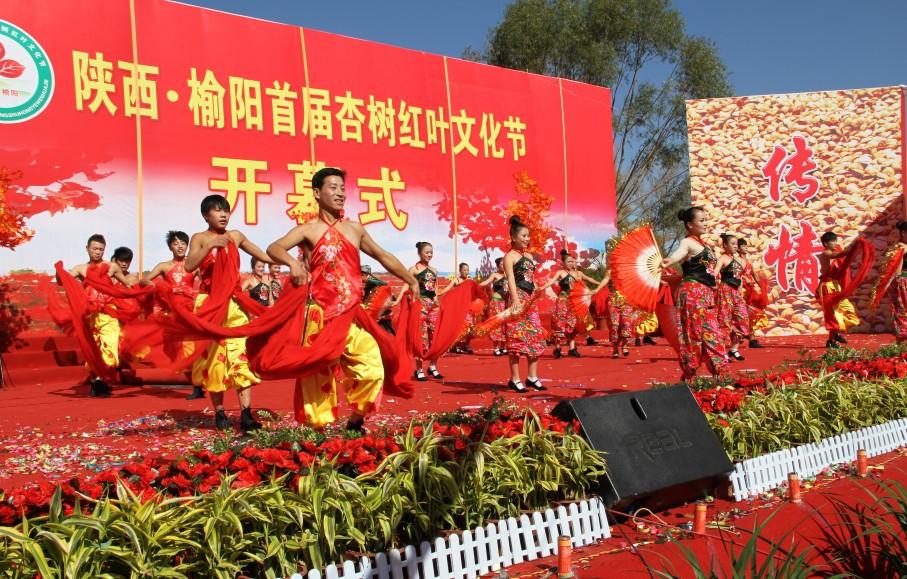 榆阳首届杏树红叶文化节盛大开幕